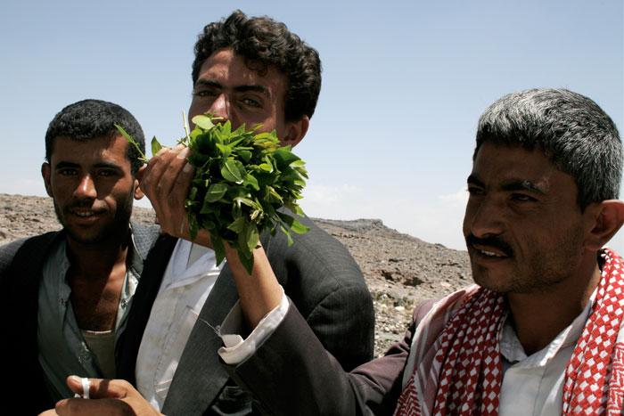 Yemen,-Men-with-qat_fiat