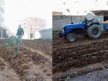 لأن السلطات تأخرت في تعبيدها...جزائريون يزرعون الطريق ثوماً وبصلاً