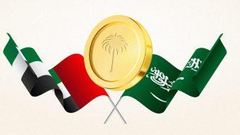 """مصرفيون سعوديون: """"عابر"""" عملة رقمية ستسبح في بحر من الخسائر"""